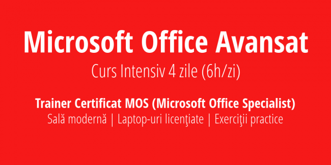 Microsoft Office Avansat Intensiv Training exe