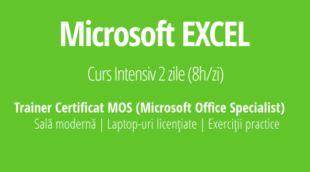 Curs Excel Training.EXE