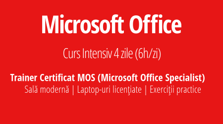 Curs Microsoft Office Training.EXE