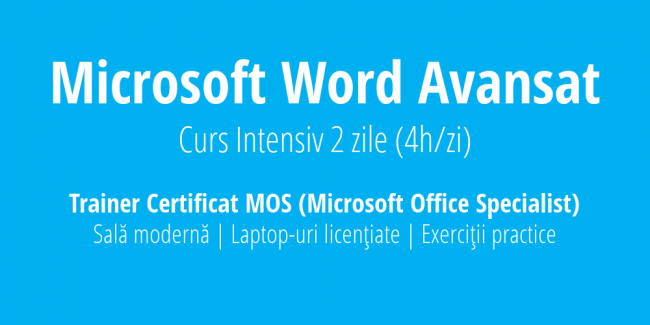 curs word avansat intensiv training